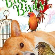 BICKERING-BIRDS
