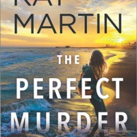 Excerpt: The Perfect Murder (a Maximum Security Novel) by Kat Martin