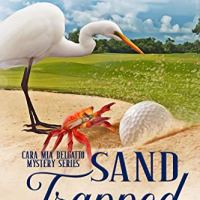 A Conversation with Joanna Campbell Slan Author of Sand Trapped